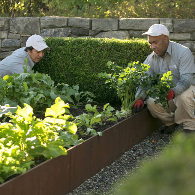 The LaurelRock Company provides sustainable offerings including edible gardens.
