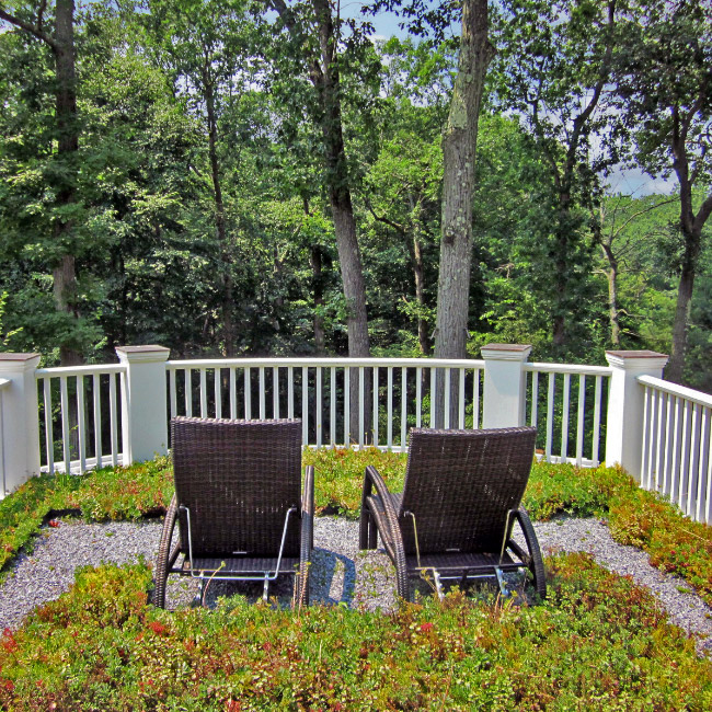 The LaurelRock Company provides sustainable offerings including live roofs and green walls.
